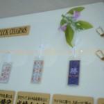 Japan Charms 1